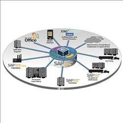 글로벌 SAP 애플리케이션 서비스 시장