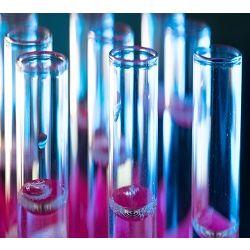 글로벌 진단 PCR 시장