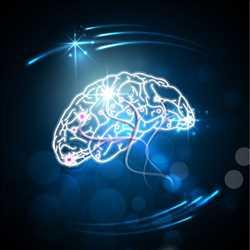 글로벌 신경 혈관 또는 중재 신경학 장치 시장