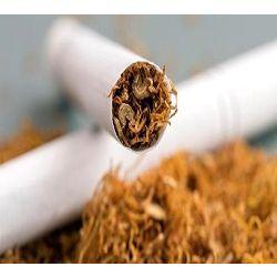 글로벌 니코틴 시장